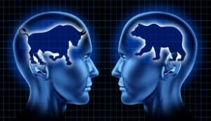 Bull Bear Heads
